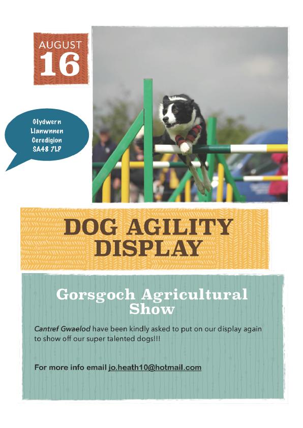 Gorsgoch Display Day, 16th August 14