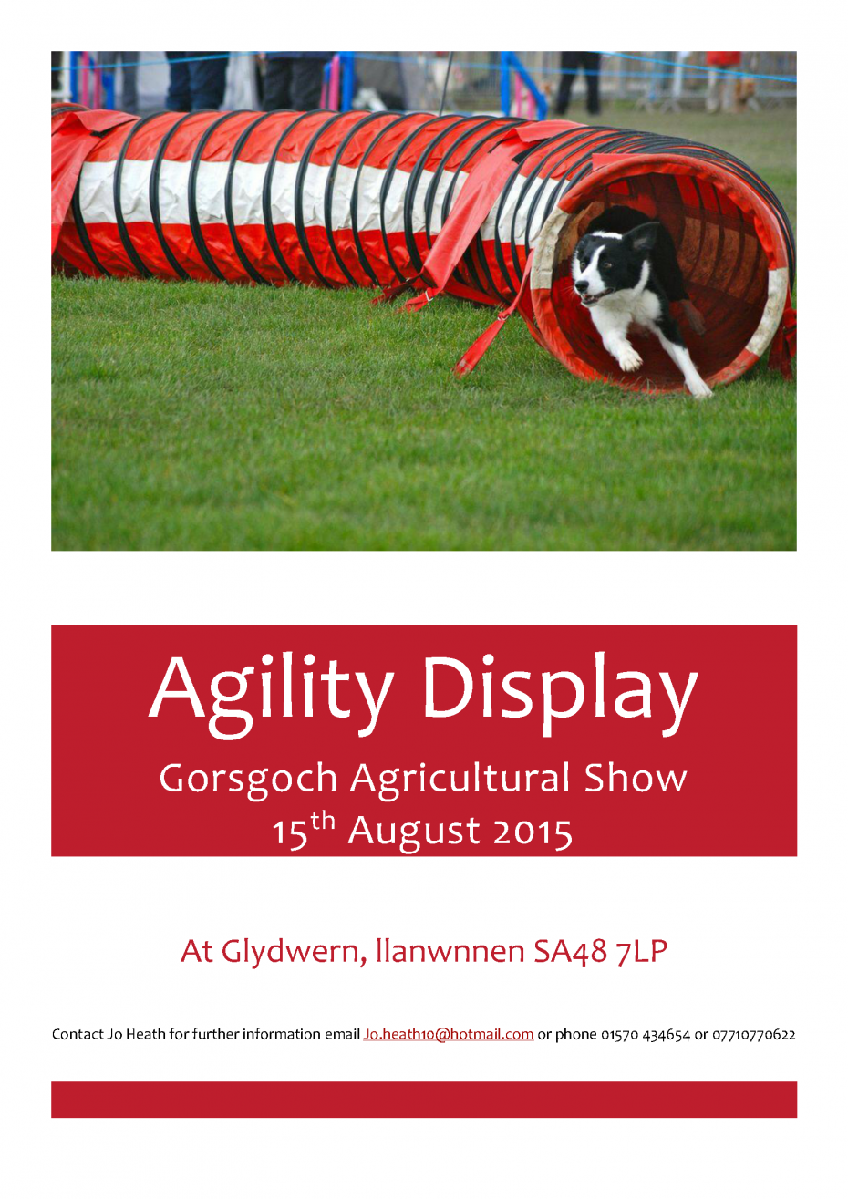 Gorsgoch Agility Display poster