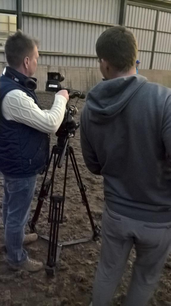 Welsh Corgi filming
